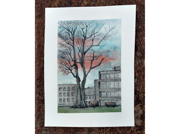 Bäume in Graz Illustration mnutzDesign